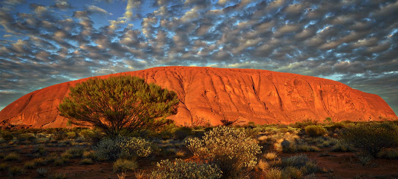Australia – w poszukiwaniu najlepszego shiraza
