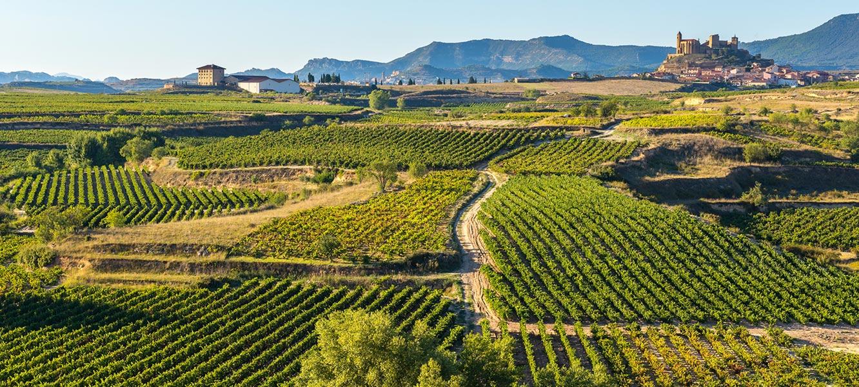 Rioja dla koneserów
