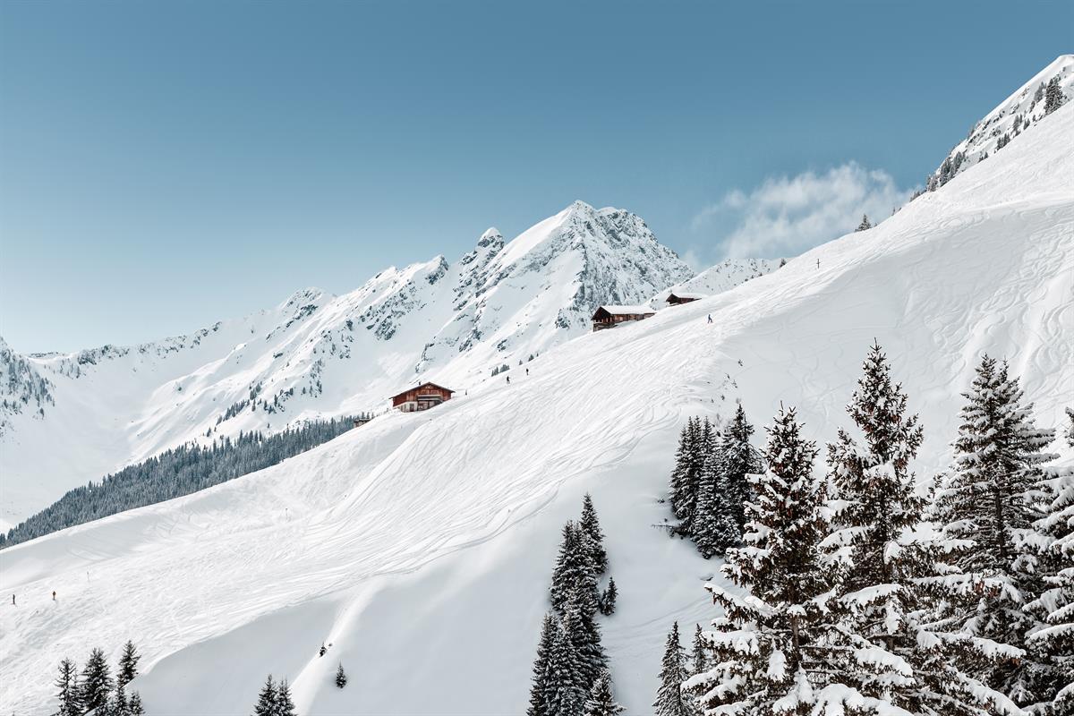 Narty   SPA w Ski Amade- Flachau * (dla Singli)