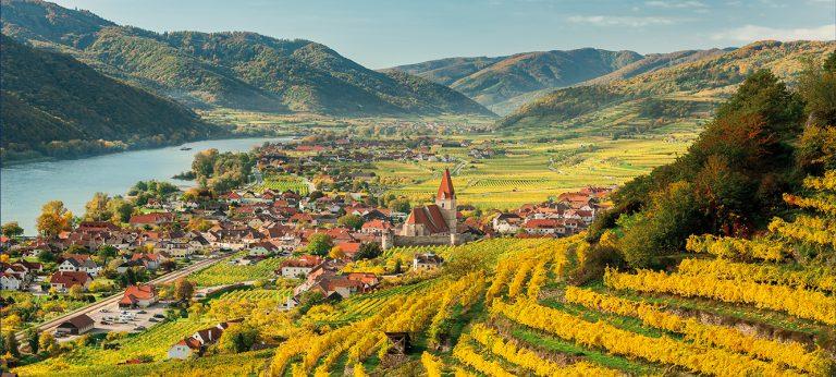 Grand Tour po winnicach Austrii